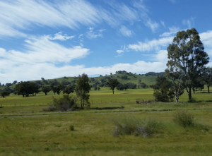 Rural Victoria. Lush green grass on hills with blue skies and clouds scattered
