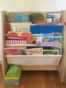 Anna Cowan's picture book shelves